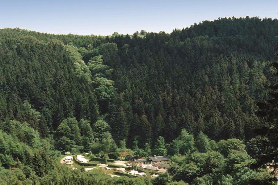 Camping Perlenau