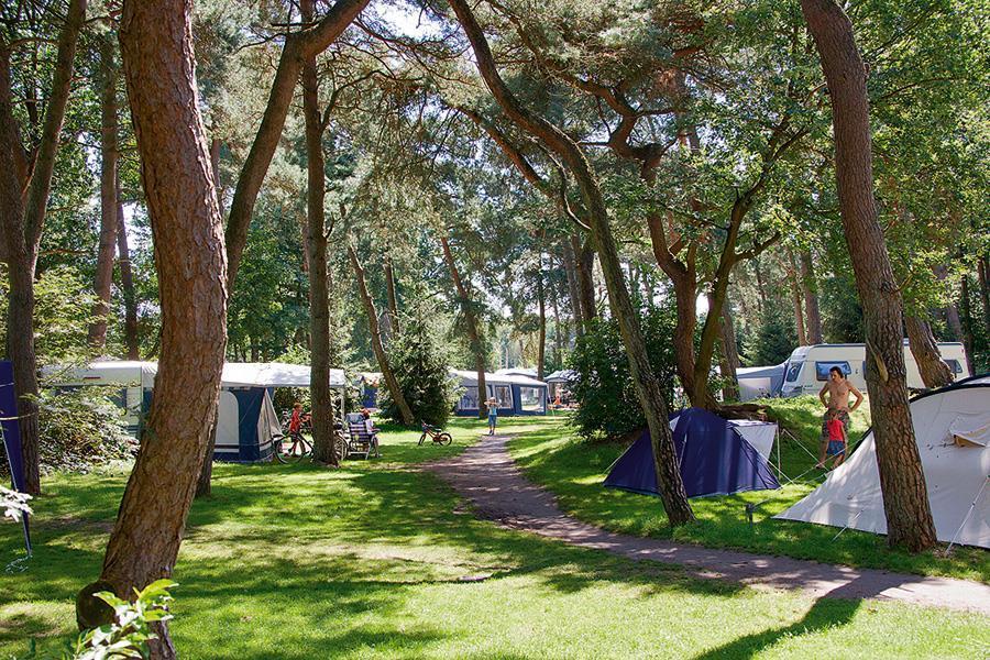 Campsite Beerze Bulten