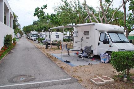 Campsite Don Cactus
