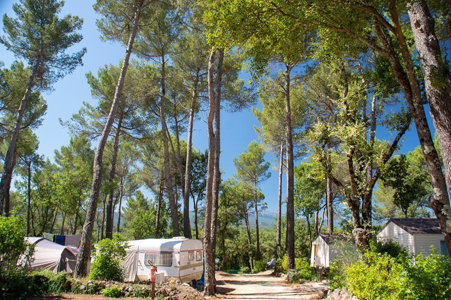 Flower Camping Le Provençal