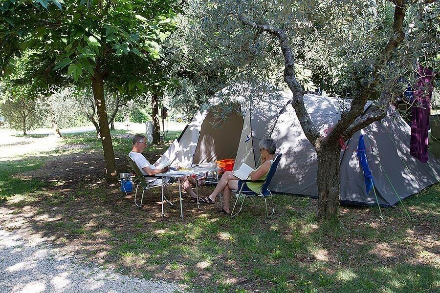Campsite Il Falcone